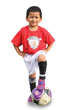 minimustangs_player